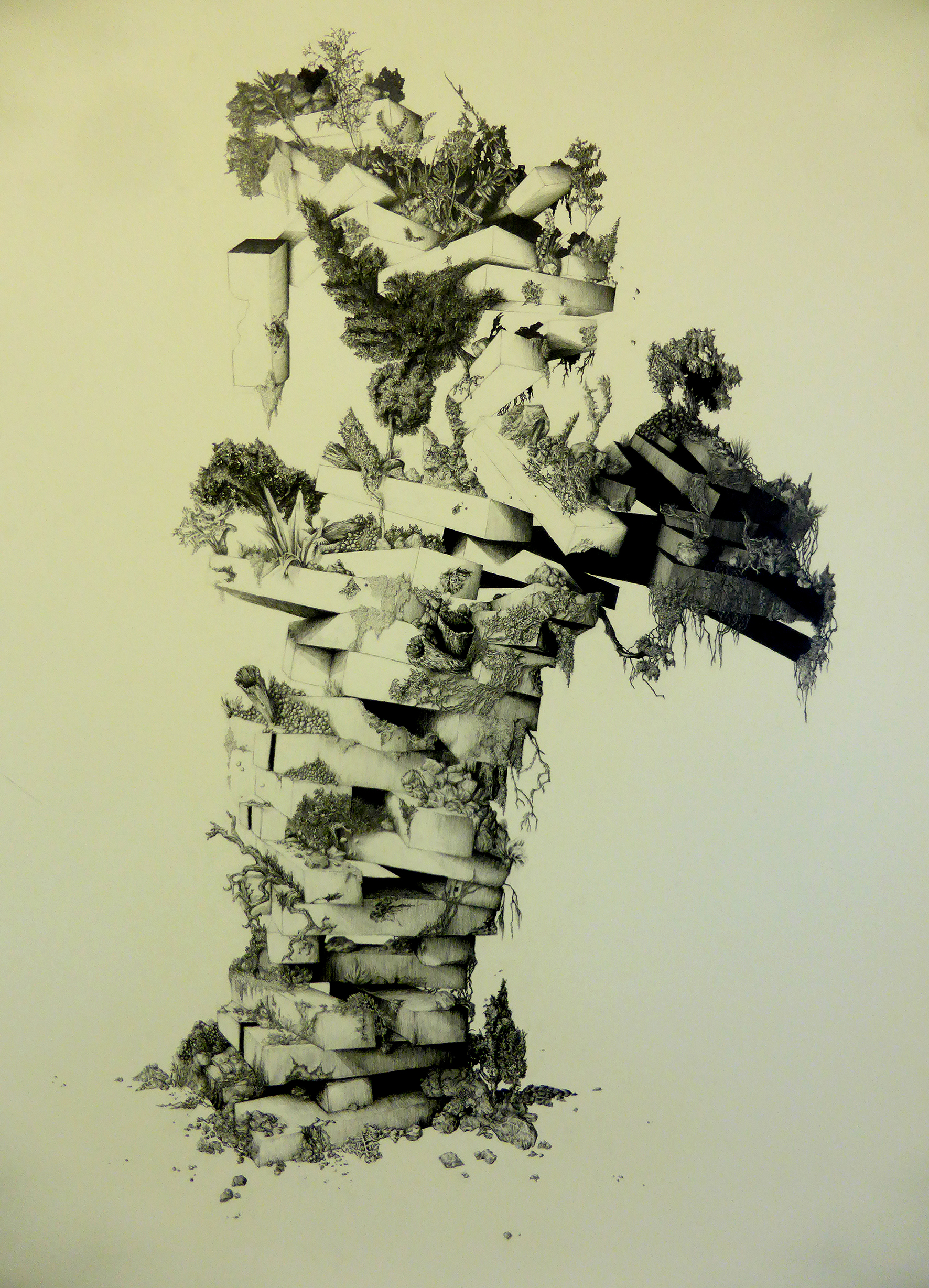 jumanji-1-graphite-sur-papier-101-x-140-cm-2016